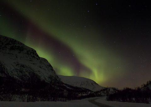 Aurora Borealis Breivikeidet Norway