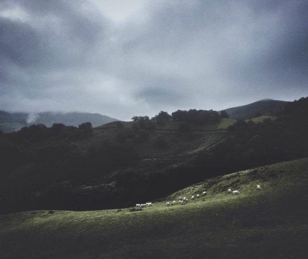 An Bealach - The Camino de Santiago   A photographic journey