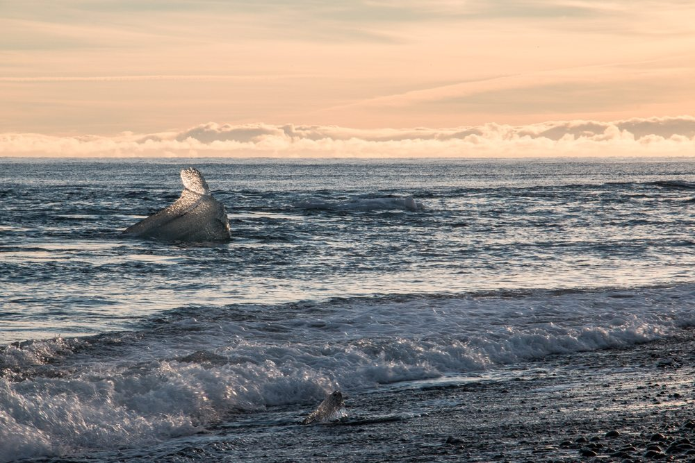 8248 Jökulsárlón beach Iceland