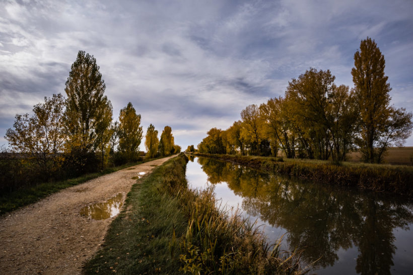 Autumn along the canal, Fromista, Camino de Santiago (Camino Frances)