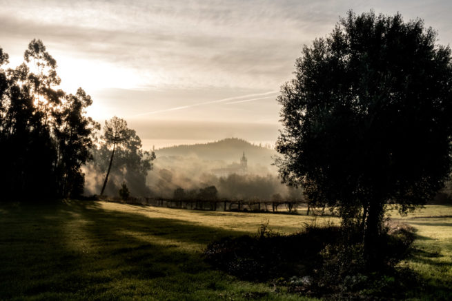 Autumn fields on the road from Vitorino dos Piaes to Barcelos, Camino de Santiago (Camino Portugues)